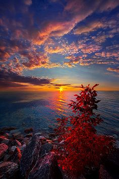 ~~Let Me Always Be With You | autumn sunrise on the shores of Lake Michigan | by Phil Koch~~