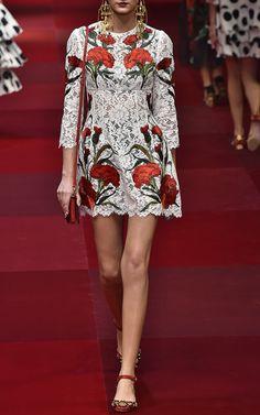 Dolce & Gabbana Trunkshow Look 75 on Moda Operandi