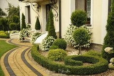 Topiary Front Yard Garden And Landscaping Landscaping Plants, Front Yard Landscaping, Landscaping Ideas, Front Gardens, Outdoor Gardens, Yard Design, Garden Planning, Garden Inspiration, Beautiful Gardens
