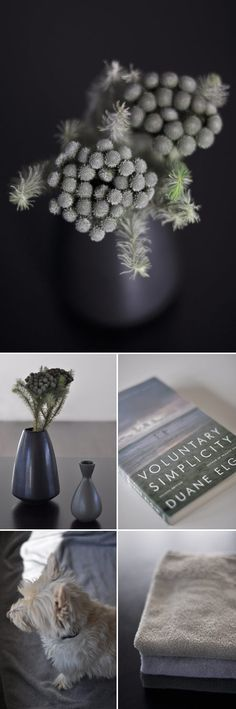 :: heart :: the work of mo+mo living, her collection of images are always so inspiring #details