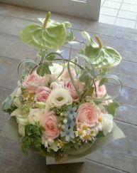 花ギフトのプレゼント【BFM】 アンスリュームでインパクト そんなフラワーアレンジメント http://www.basketflowermarkets.com