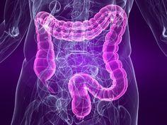 Un completo artículo sobre el síndrome del intestino irritable o colon irritable con información sobre su diagnóstico, síntomas o la alimentación adecuada.