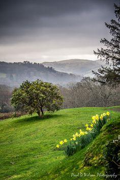 ~~Wales, March 2014 | a foggy picturesque landscape by revpdwilson~~