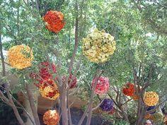 coloured flower balls Wynn vegas
