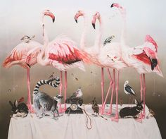 Kate Bergin - Vanity Fair, 2012. Archival pigment print on Somerset paper. Courtesy of the artist and Mossgreen Gallery, Armadale, Victoria, #Australia. Learn more about this piece and why it was included in Ambassador Berry's @ArtInEmbassies collection: http://youtu.be/03REInjUNr0 #Art #Wildlife #Conservation