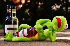 Kermit, Żaba, Wina, Pić, Alkoholu