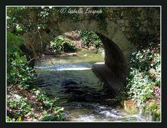Gémenos, Forêt de Saint Pons... http://mistoulinetmistouline.eklablog.com/