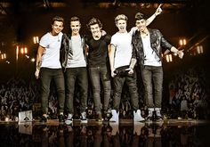 One Direction will head back on the road for the 'Where We Are' Tour in 2014. http://tickget.com/one-direction/