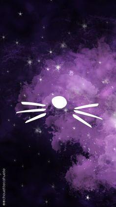 dan and phil cat whiskers