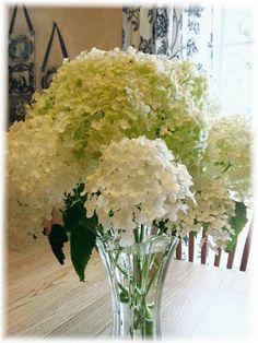How to dry hydrangeas - NancyMalay.blogspot.com