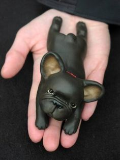 Black French Bulldog Sculpture, made of Polymer Clay.