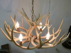 Mule Deer Antler Chandelier Rustic Lighting Great for A Cabin or Trophy Room | eBay