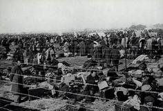Campo de concentracion en el Sur de Francia para exiliados españoles republicanos