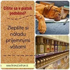 Viac na www.AromaCentrum.sk. Vône do každého interiéru...