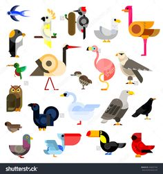 Owl And Eagle, Swallow And Hummingbird, Parrot, Falcon, Penguin, Stork, Swan, Sparrow, Pigeon, Flamingo And Gull, Ostrich, Raven, Pecker, Toucan, Cardinal, Pelican, Blackcock, Kiwi Birds Flat Icons Stock Vector Illustratie 443607742 : Shutterstock