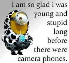 57 Funny Minion Quotes Of The Week And Funny Sayings 52