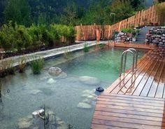 #schwimmteich in Salzburg