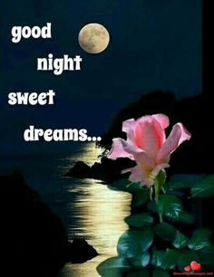 Gud night stills image , Good Night Love Quotes, Good Night I Love You, Good Night Friends, Good Night Messages, Good Night Sweet Dreams, Good Night Image, Good Morning Good Night, Good Night Greetings, Morning Greetings Quotes