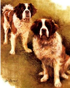 SAINT BERNARD LIFE SAVING DOG AND MONASTRY PRIOR OLD ORIGINAL 1934 DOG PRINT