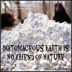 DE is not eco-friendly when used as a poultry pesticide and does not fit into a holistic, natural chicken keeping model. Gonna have to read because some.people swear by it and others say it causes respiratory illness and issues Chicken Chick, Chicken Feed, Diy Chicken Coop, City Chicken, Chicken Ideas, Urban Chickens, Pet Chickens, Chickens Backyard, Rabbits