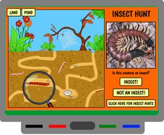 FOSSweb has many wonderful interactive science activities for K-8 students. Insect Hunt is one of my favorites from the K-2 section. Move the magnifying glass around to find the insects. Once you answer whether or not it is an insect, you will then be presented with some insect facts. Look for insects on land and water!