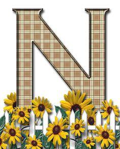 Letra con verja floral.....N