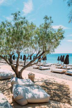 Samos, Seaside Resort, Greece, World, Outdoor Decor, Plants, Greece Country, The World, Plant