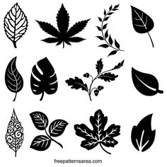 Leaves Silhouette Vector Designs and Clipart Images | FreePatternsArea