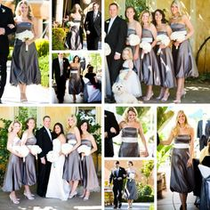 Bridesmaid Dresses: Bill Levkoff #455 in Euro Grey with Euro Ivory sash