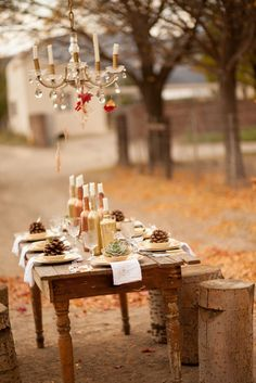 Explore range of Karoo Wedding Photographs by Wedding Photographer Sarina Engelbrecht. Autumn Bride, Wedding Decorations, Table Decorations, Wedding Shoot, Destination Wedding, Place Card Holders, Creative, Weddings, Home Decor
