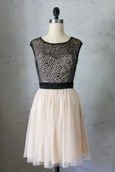 Delphine Tulle Dress: a beautiful dress in peach nude tulle and a contrast black webbed lace covered bodice. $54