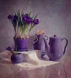 ideas flowers purple arrangement ana rosa for 2019 Purple Stuff, Purple Love, All Things Purple, Purple Lilac, Shades Of Purple, Deep Purple, Purple Flowers, Purple Art, Purple Glass