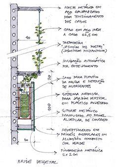 Croqui detalhe da fachada verde