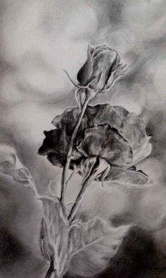 рисунок карандашом. мои рисунки.
