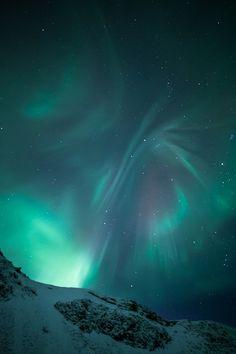 "wolverxne: "" Aurora Borealis Butterfly | by: (Arnar Bergur) """
