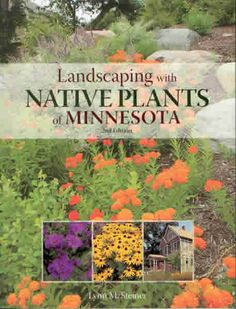 "Read ""Landscaping with Native Plants of Minnesota - Edition"" by Lynn M. Steiner available from Rakuten Kobo. This new and updated edition of Landscaping with Native Plants of Minnesota combines the practicality of a field guide w. Minnesota Garden, Minnesota Landscaping, Plants, Shade Garden, Native Plants, Perennials, Native Garden, Landscape, Prairie Garden"