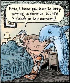 Home of Bizarro by Dan Piraro, a single-panel comic strip making people laugh for over 30 years. Cartoon Jokes, Funny Cartoons, Funny Memes, Cartoon Images, Funny Pins, Starwars, Bizarro Comic, Far Side Cartoons, Comics Kingdom