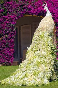 Awesome Peacock Topiary - Are you kidding me? Now how am I going to achieve this? Hmmm