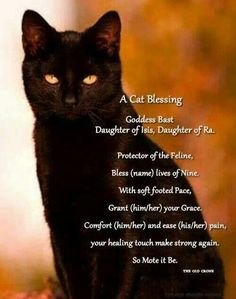 Bastet prayer for cat/ when my Boo went missing for 4 days I did a Bastet ritual mins later he showed up. Love the Goddess of Cats! Wicca Witchcraft, Magick, Crazy Cat Lady, Crazy Cats, Gatos Cats, Protection Spells, Book Of Shadows, Spirit Animal, Spelling
