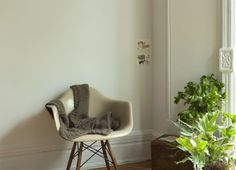 cream chair, cream wall, gray throw - who would have thought? loves.