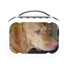Vizsla Lunchbox
