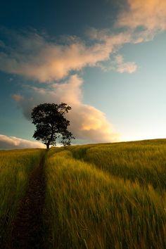 Inverness Scotland by  James Appleton