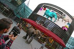 The herd of digital elephants that has been marching across the world's digital billboards to raise awareness of the crisis facing the animal reached London today (24 March). Conservation campaigners today welcomed #MarchforGiants, the world's first ever virtual elephant herd, as it arrived at Four Dials Square in Westfield Stratford City.