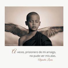 A veces, prisionero de mi arraigo, no pude ver mis alas. #Umbrales #AlejandroLanus #Aforismos