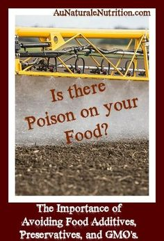 Is YOUR body a BAD science experiment? Food additives, GMO's, and the importance of organic food, by www.aunaturalenutrition.com