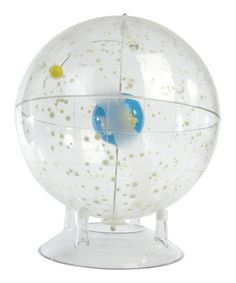 Another great find on #zulily! Celestial Star Globe by American Educational Products #zulilyfinds