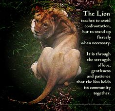 The lion does not fight just to fight. It hunts stealthy and only fights when it becomes necessary to defend. The lion's pride is a community that works together with patience and gentleness... The Lion reminds us that as a community, we can all work together with love and patience.