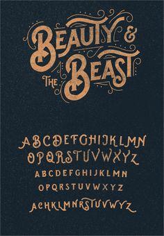 Splandor Typeface Vintage Font is part of Vintage fonts alphabet - Hand Lettering Alphabet, Typography Letters, Calligraphy Fonts, Free Typography Fonts, Font Art, Alphabet Fonts, Lettering Styles Alphabet, Free Typeface, Handwriting Alphabet