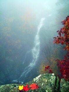 White Oak Falls in Shenandoah NP, Virginia