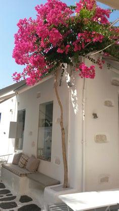 Πάρος (Paros) στην περιοχή Πάρος, Κυκλάδες